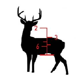 Xbow.Range w deer.jpg